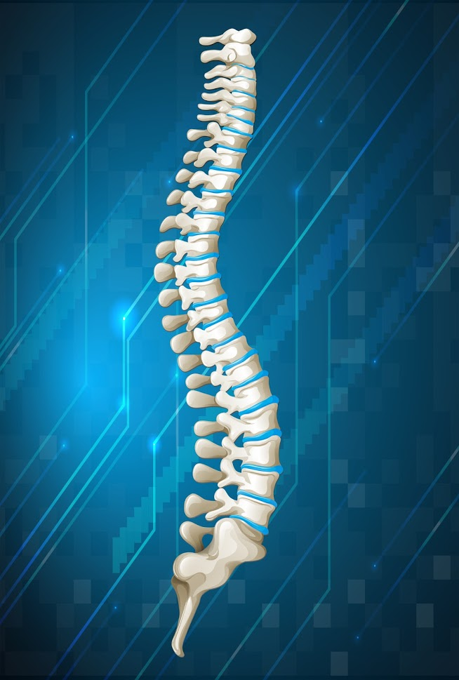 Frequently Asked Questions About Kyphosis