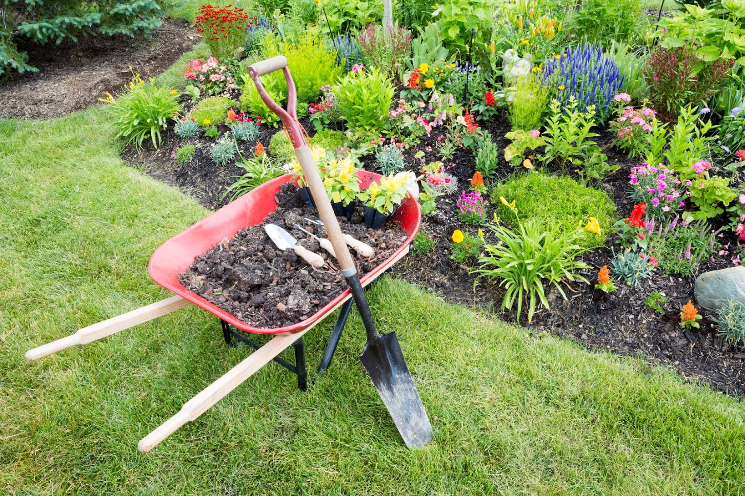 Tips for Preventing Back Pain After Yard Work